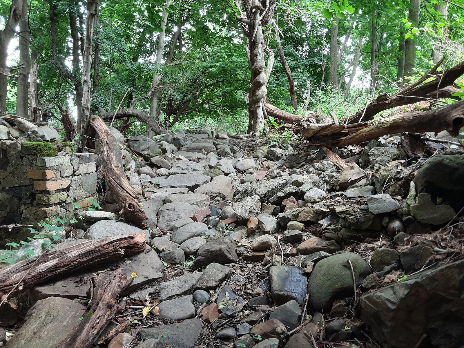 trail 1 - Hazmat - Mountain Biking Pictures - Vital MTB