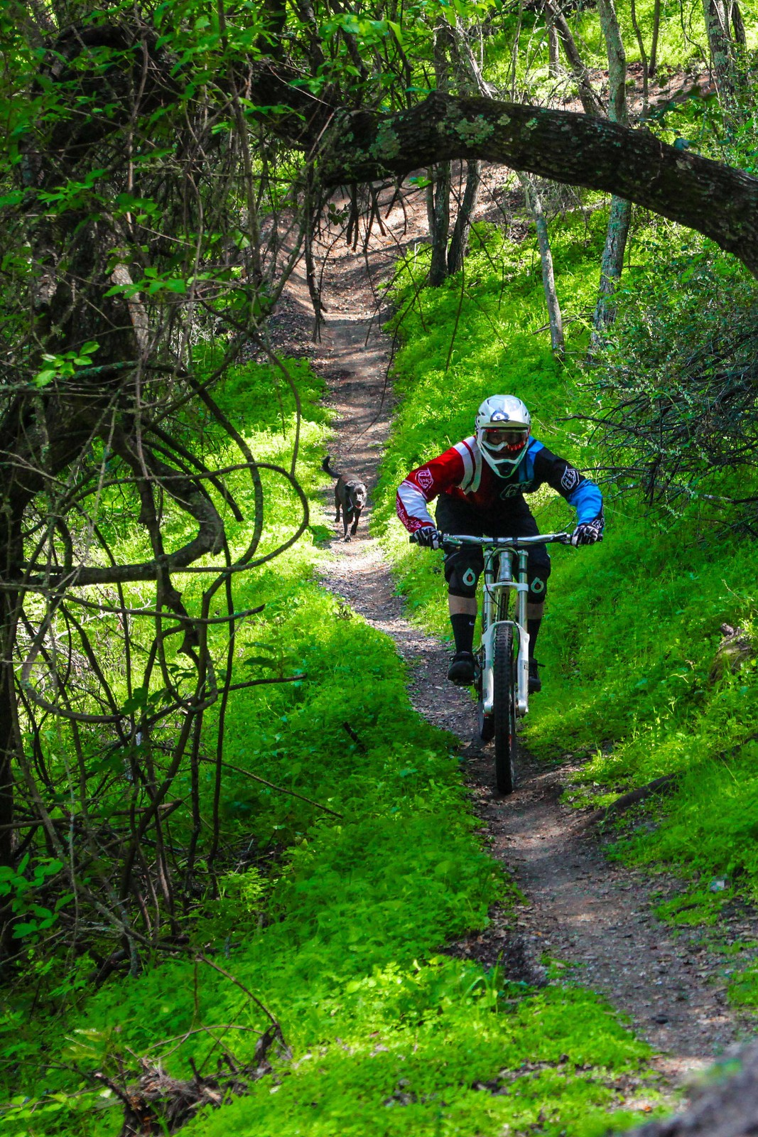 IMG 3057 - GnarHuck - Mountain Biking Pictures - Vital MTB