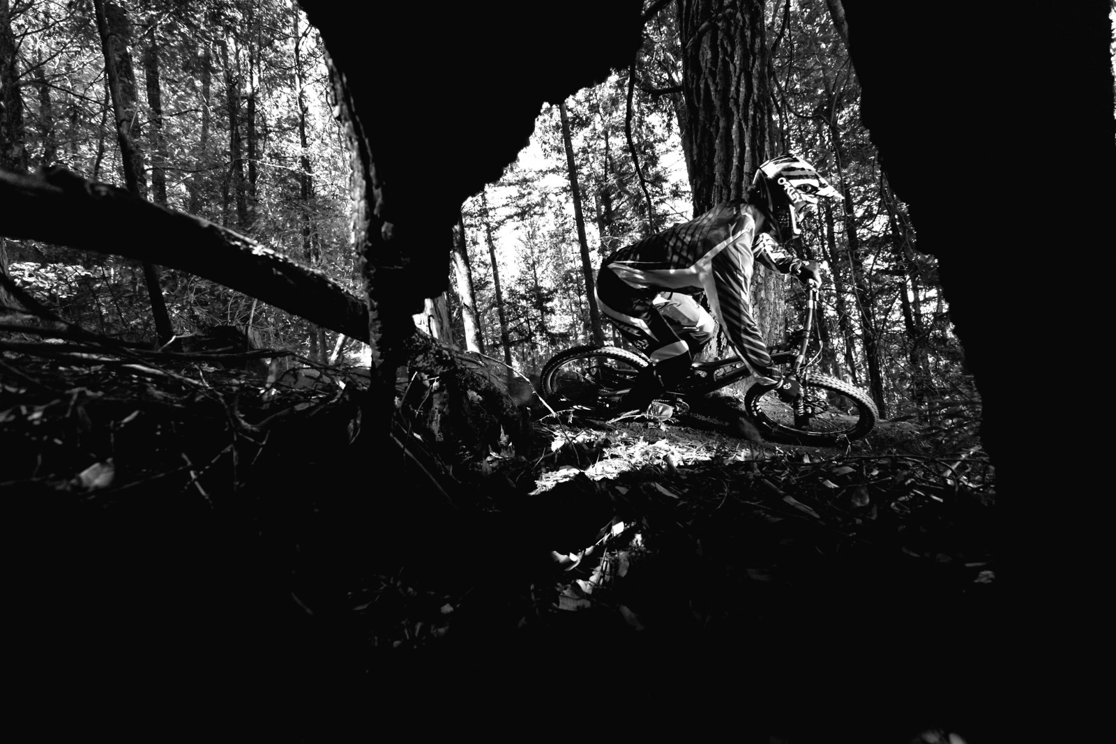 Dark Woods of Santa Cruz - GnarHuck - Mountain Biking Pictures - Vital MTB