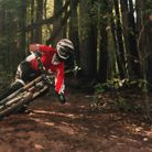 Santa Cruz Dark Woods Part Deux