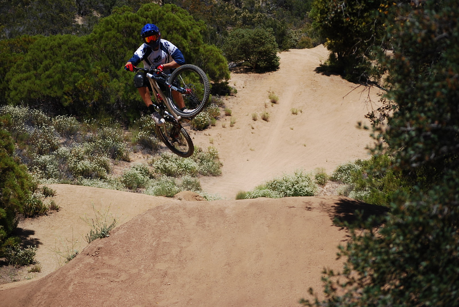 Hip at Pine Valley - adamdigby - Mountain Biking Pictures - Vital MTB
