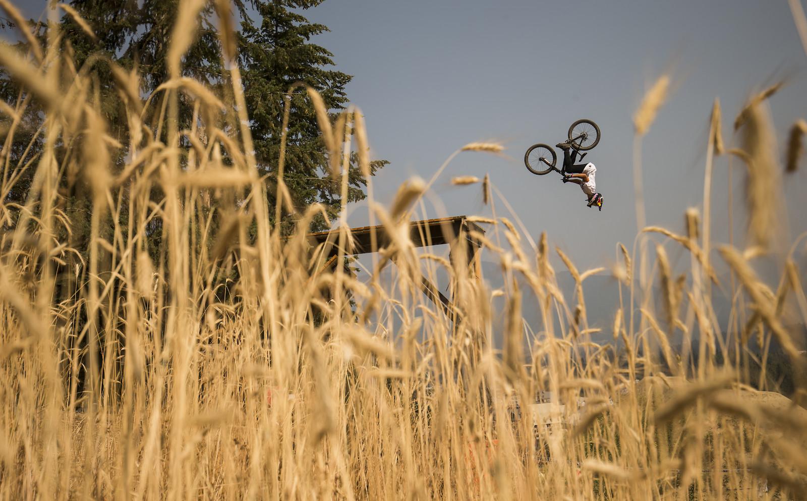 1 - phunkt.com - Mountain Biking Pictures - Vital MTB