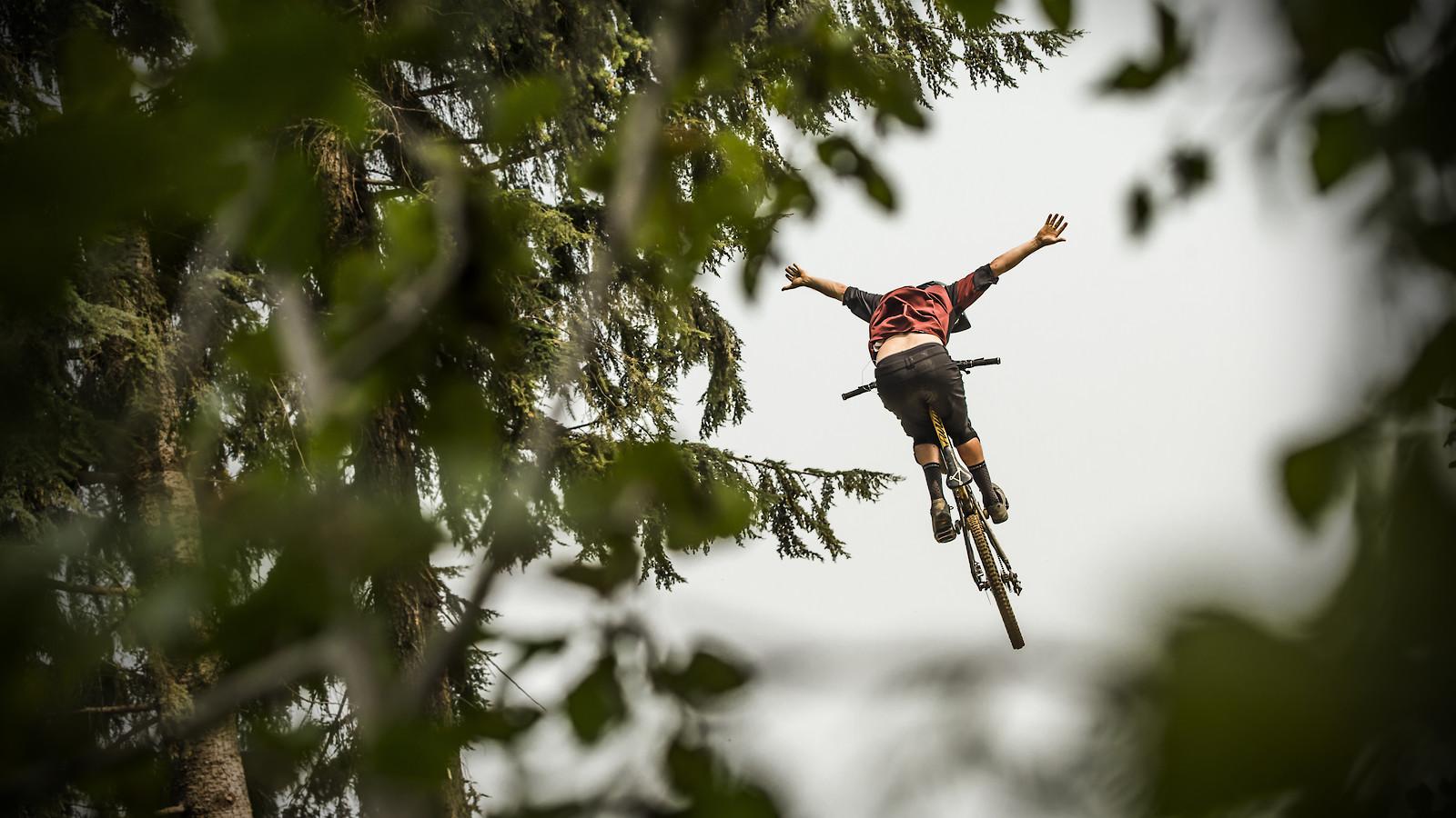 43278065130 1b14827811 o - phunkt.com - Mountain Biking Pictures - Vital MTB
