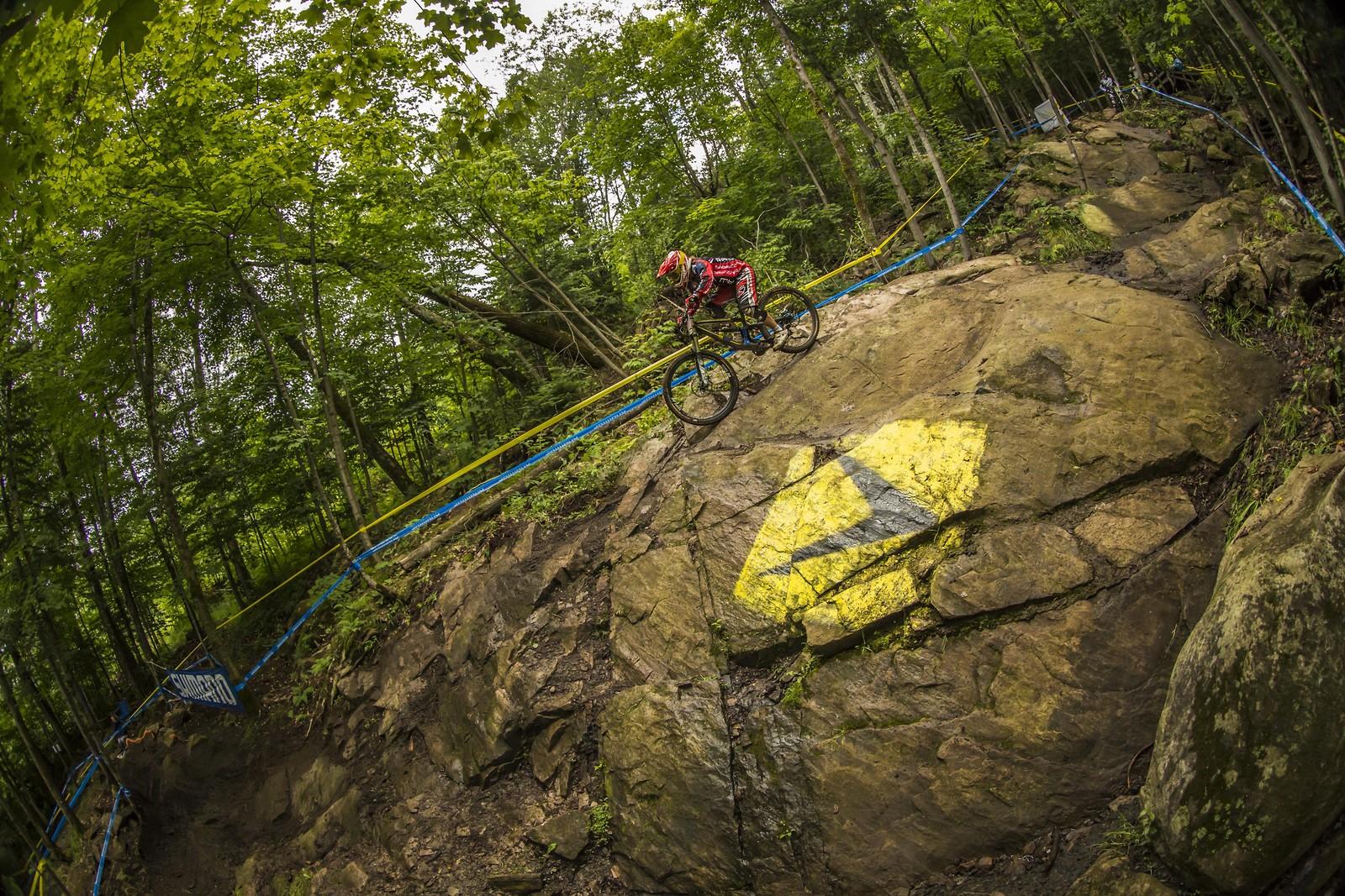 katy curd msa 2015 - phunkt.com - Mountain Biking Pictures - Vital MTB