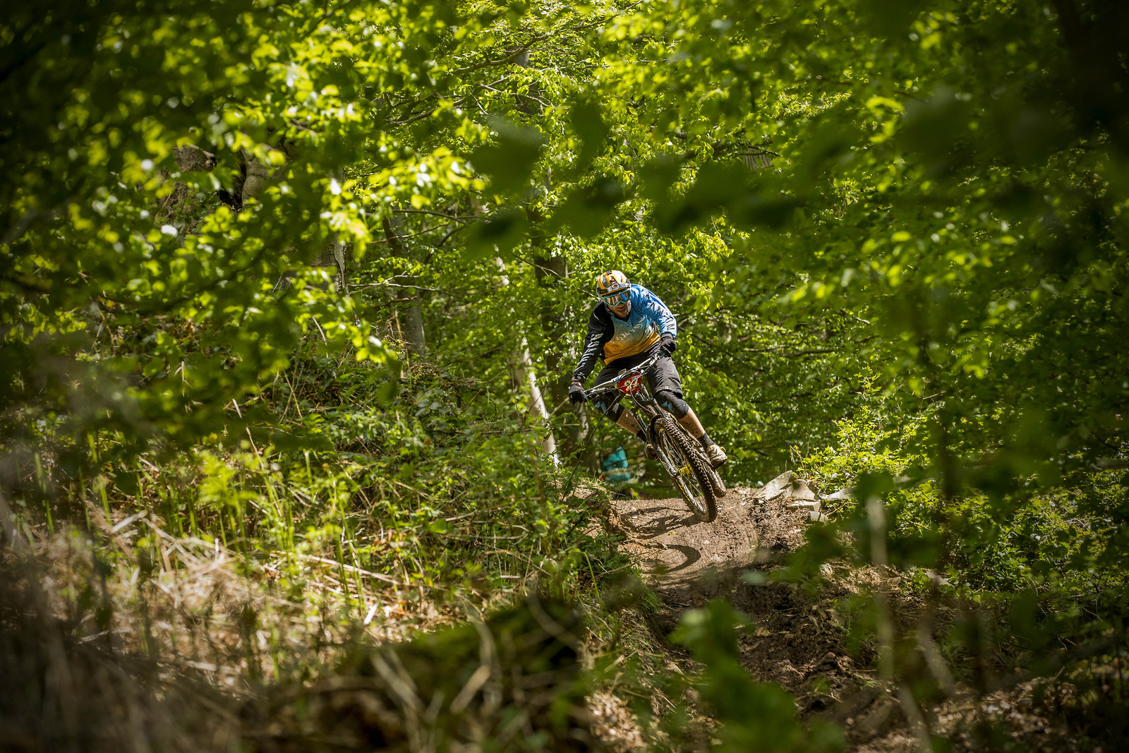 fabien news tweedlove 2015 - phunkt.com - Mountain Biking Pictures - Vital MTB
