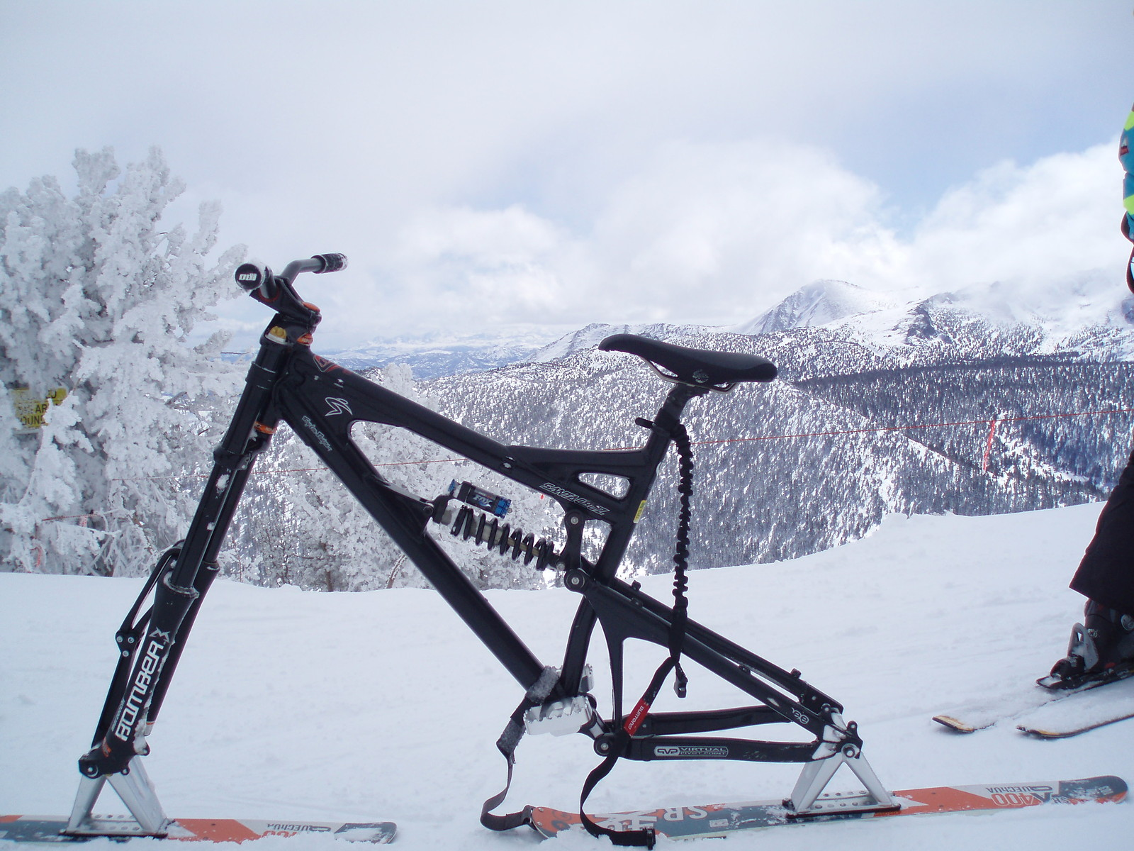 P3020020 - trailmarc - Mountain Biking Pictures - Vital MTB