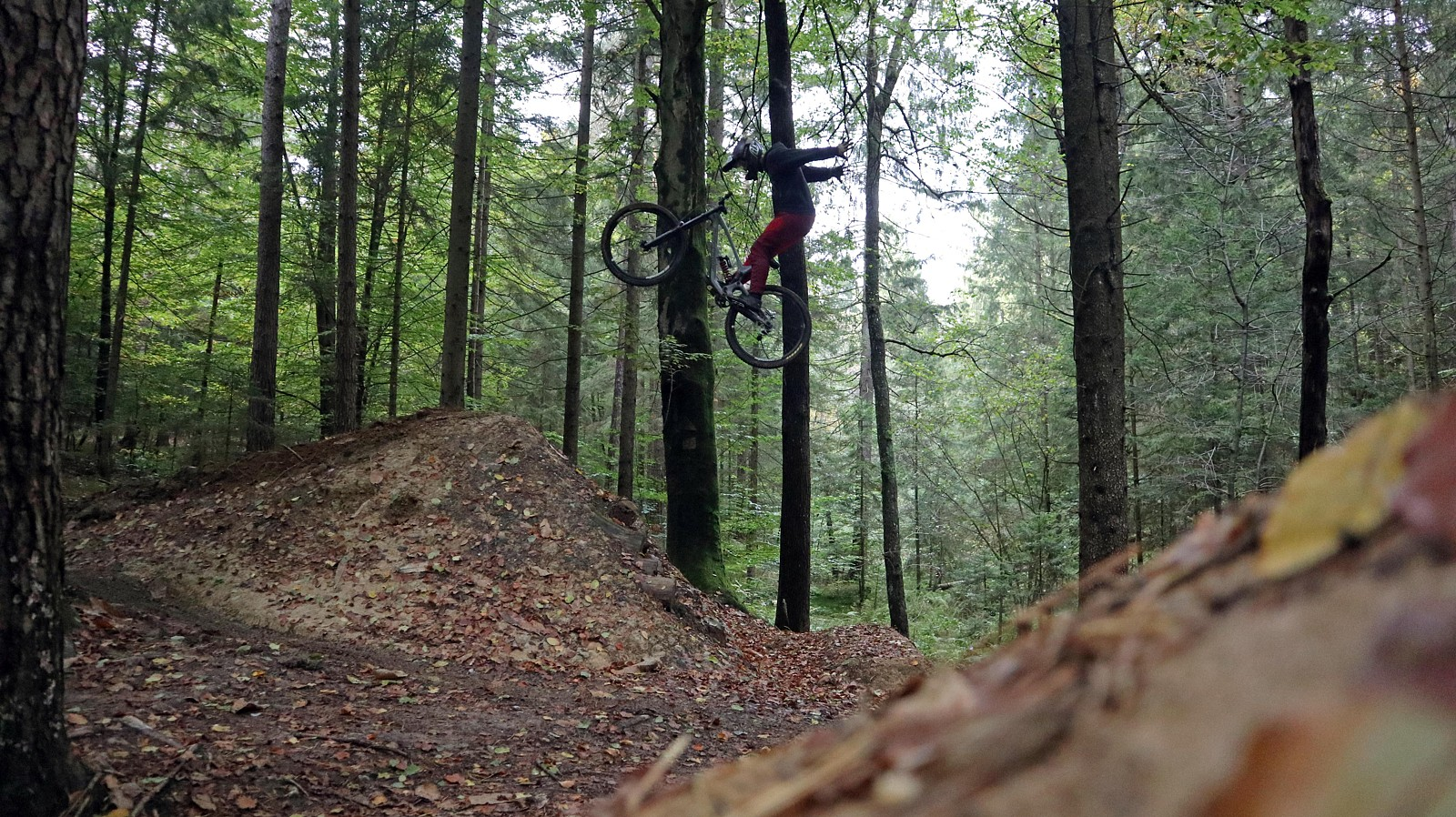jan jp step up photo porsonmedia 1 - porson - Mountain Biking Pictures - Vital MTB