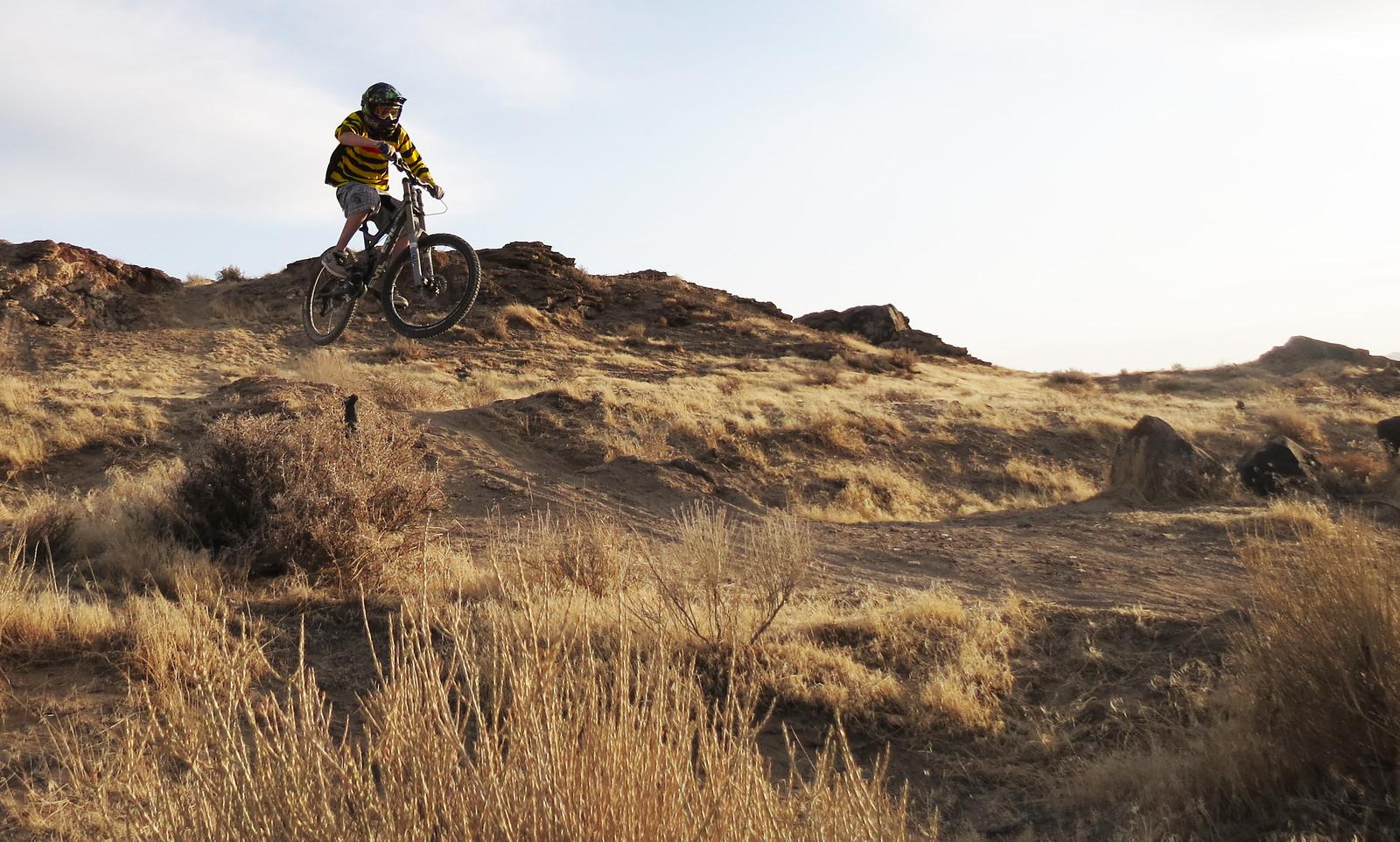 Scrub 2 - Moosey - Mountain Biking Pictures - Vital MTB