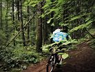 Norco Commercial - 29ers