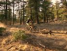 Specialized Stumpy Commercial