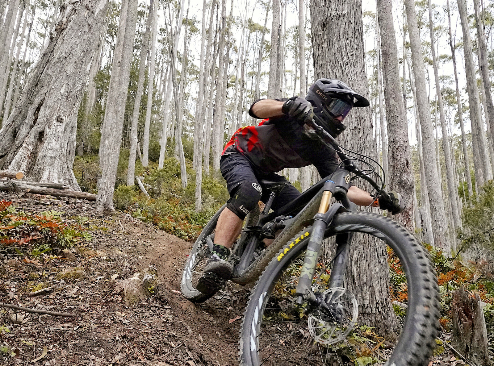 Styx & Stones, Maydena Bike Park - digitalhippie - Mountain Biking Pictures - Vital MTB