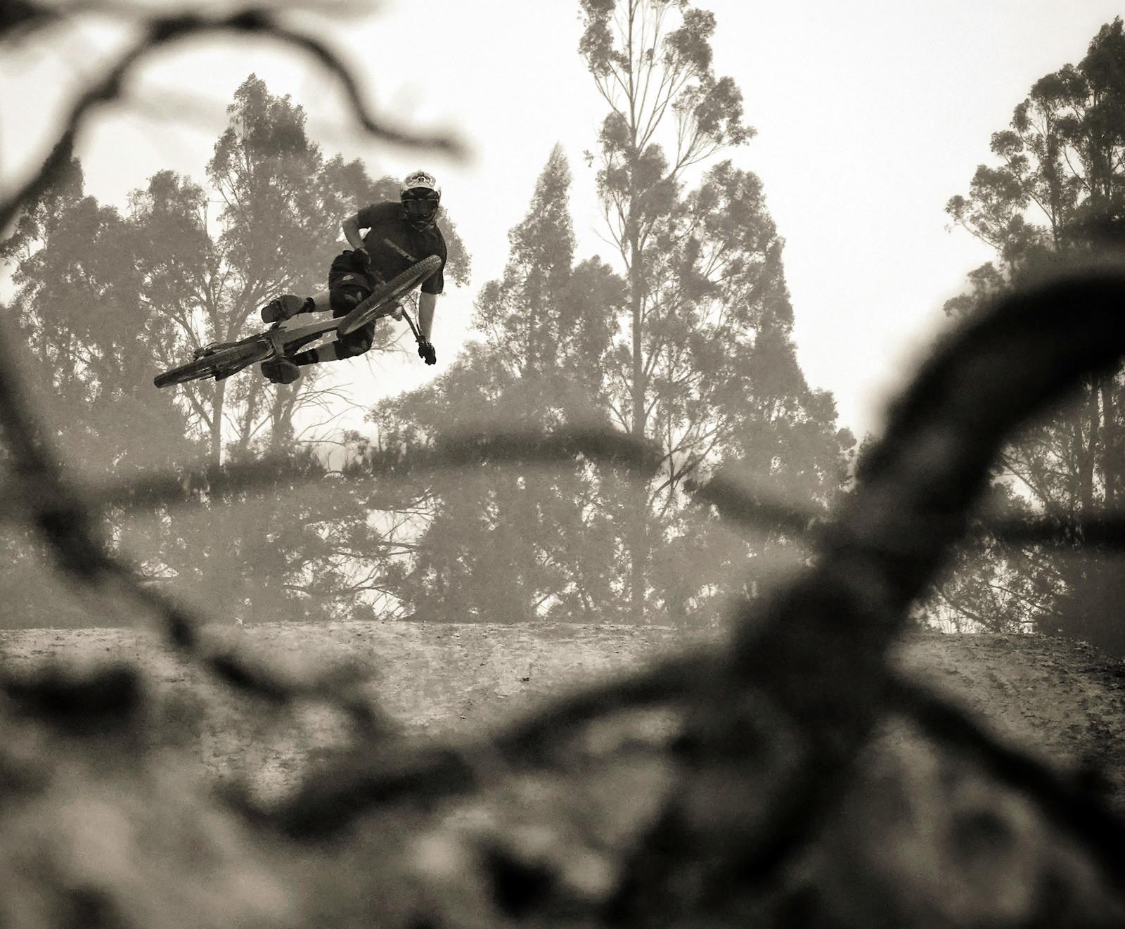 maydena-gravity-fest-3 - digitalhippie - Mountain Biking Pictures - Vital MTB