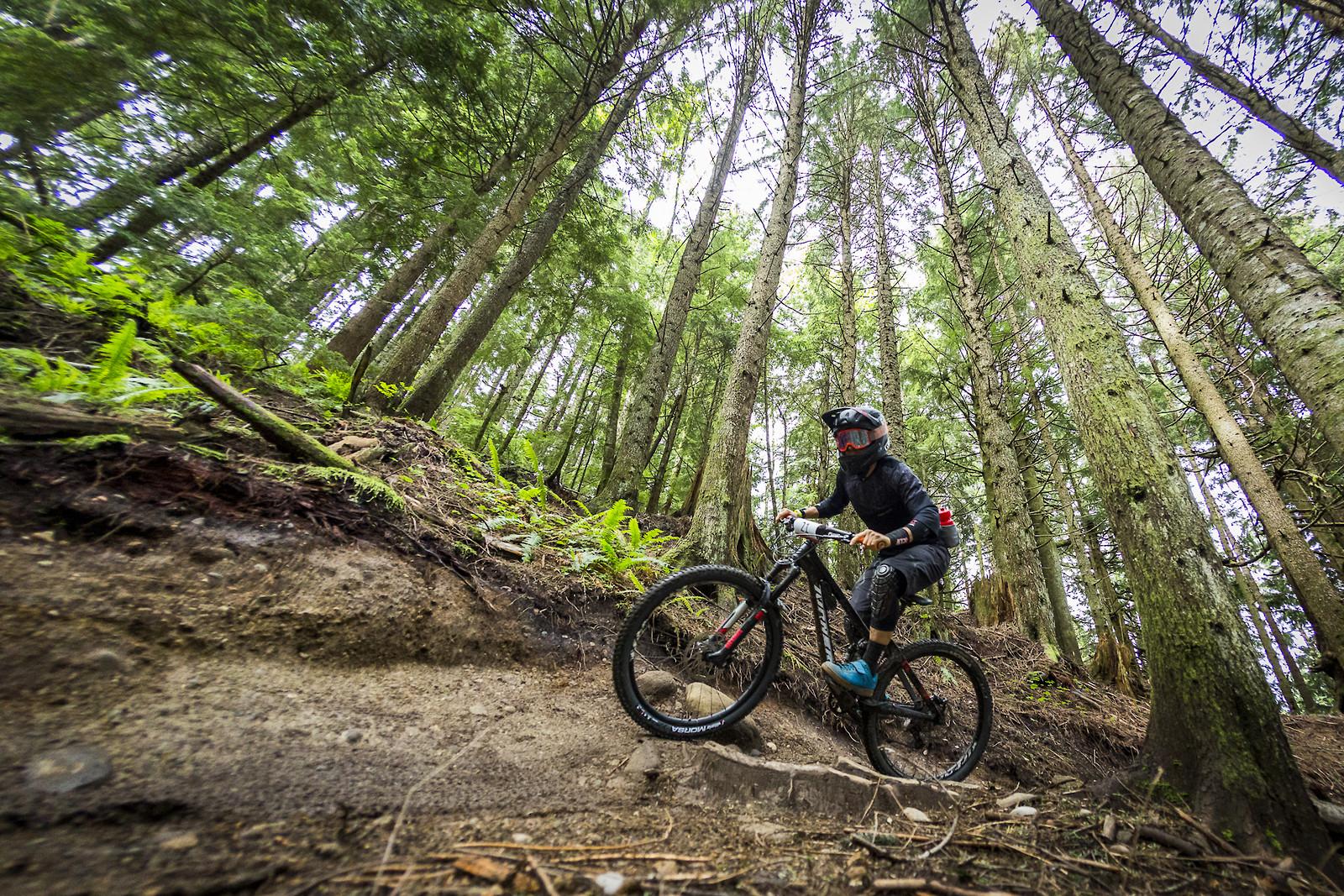 IMG 1583 - Beezkneez - Mountain Biking Pictures - Vital MTB