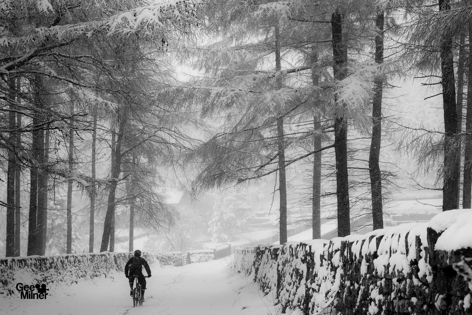 Winters day - Geemilnermedia - Mountain Biking Pictures - Vital MTB