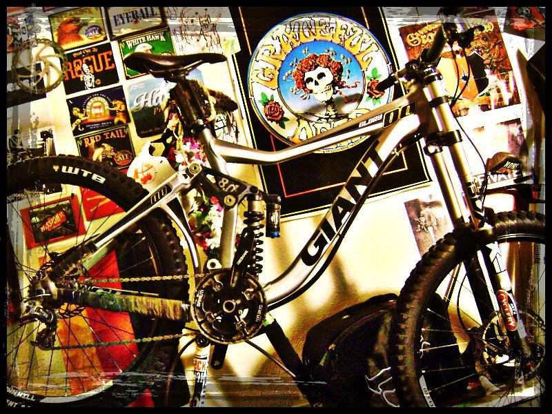 Gloria - Grateful Shred - Mountain Biking Pictures - Vital MTB