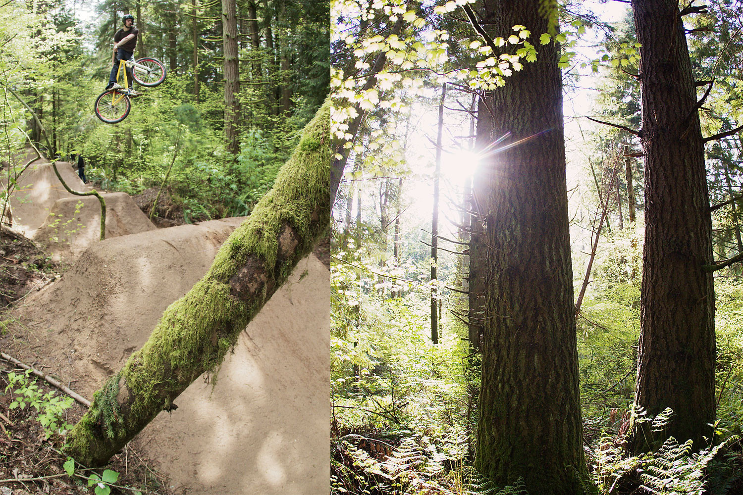 Vital Jungle tothemoon 9 - corytepper.com - Mountain Biking Pictures - Vital MTB