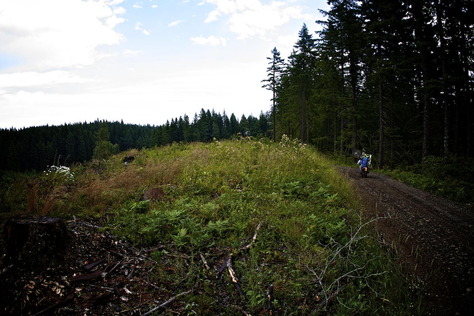 Kirt Voreis at Hood River - corytepper.com - Mountain Biking Pictures - Vital MTB
