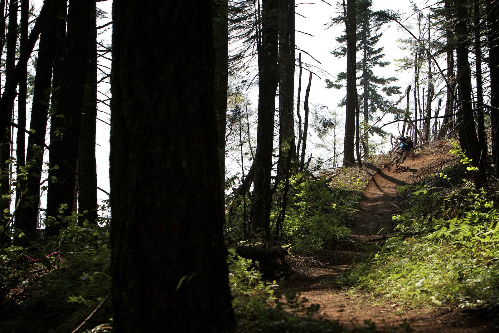 Oregon Enduro, Stage 4 of Hood River, Paul Lacava - corytepper.com - Mountain Biking Pictures - Vital MTB