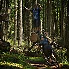 Heckle Zone at the Hood River Enduro