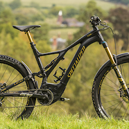 Specialized Levo Tribal Gold