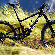 2020 Specialized Enduro Expert