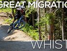 The Great Migration: Whistler