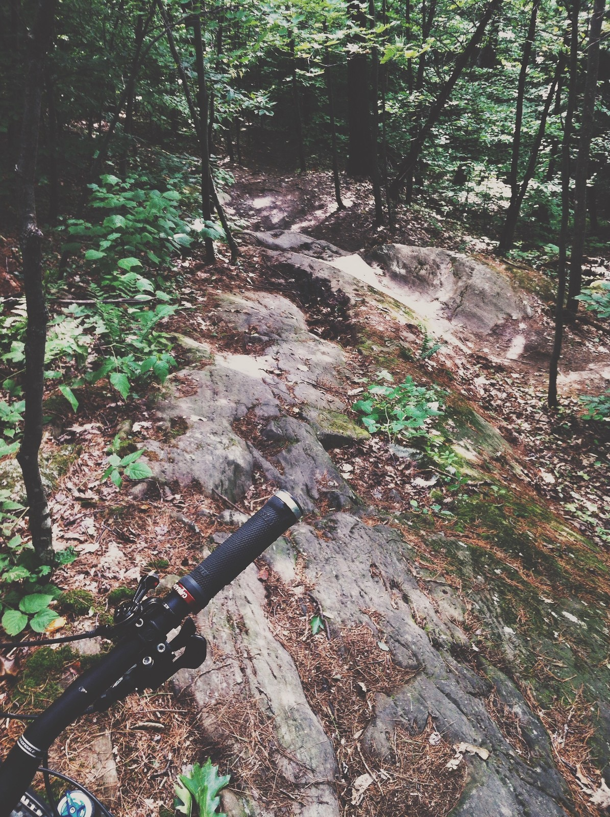 Montpelier, VT - Fusion - Mountain Biking Pictures - Vital MTB