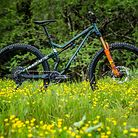 Commencal TR 29 UK Edition