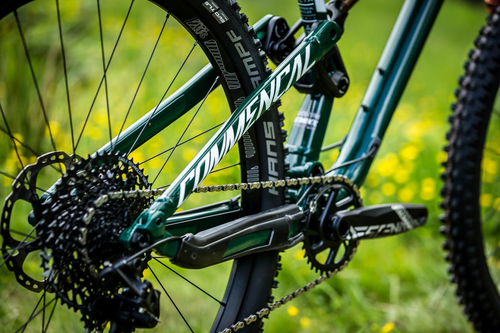 FW18 AN3X7463 - Commencal Meta TR 29 - Mountain Biking Pictures - Vital MTB