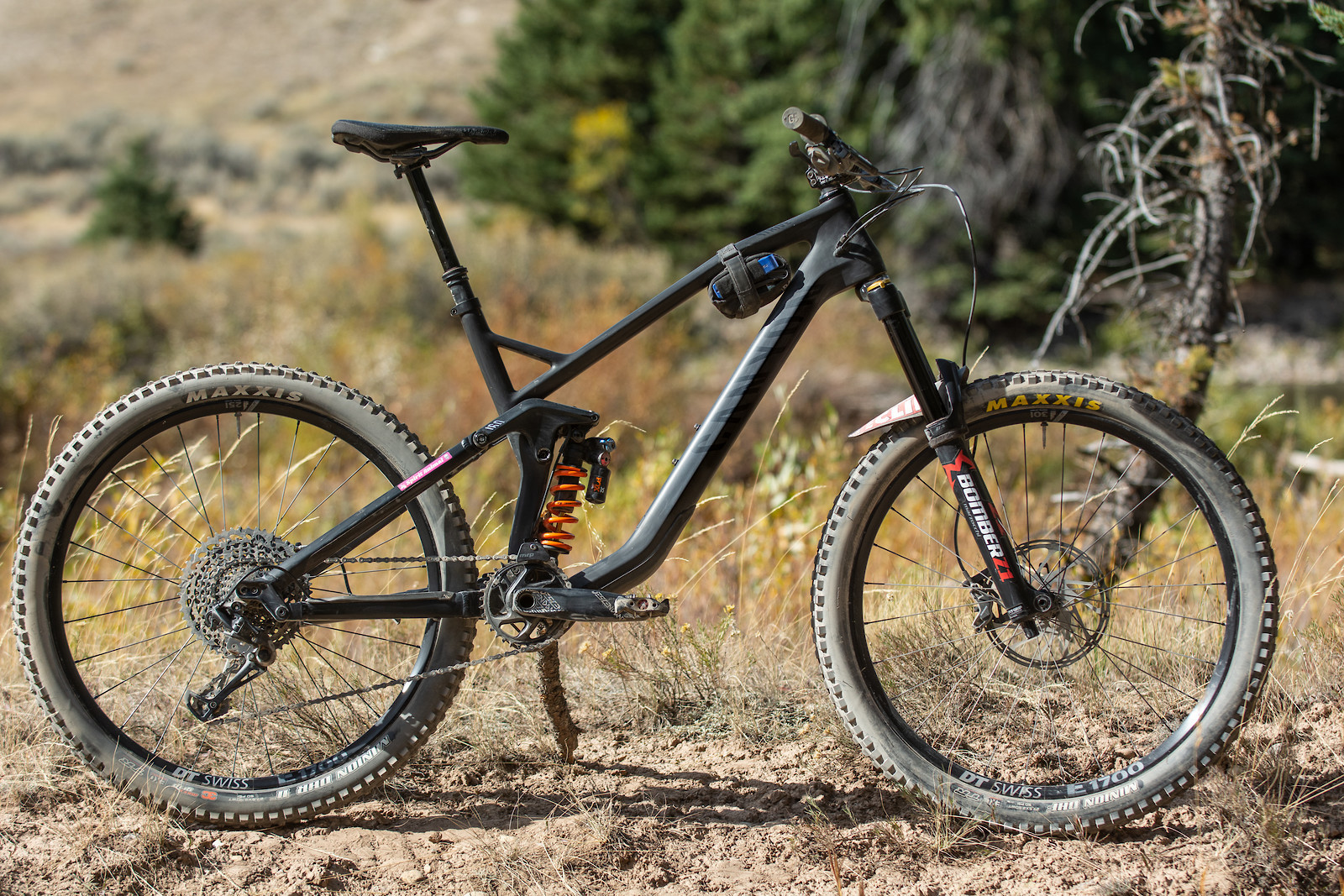 Canyon Strive CF coil - 2018 Vital Bike of the Day Collection - Mountain Biking Pictures - Vital MTB