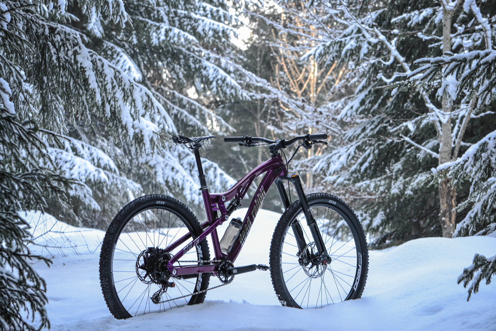 Dead Rabbit Geo29 - 2019 Vital Bike of the Day Collection - Mountain Biking Pictures - Vital MTB