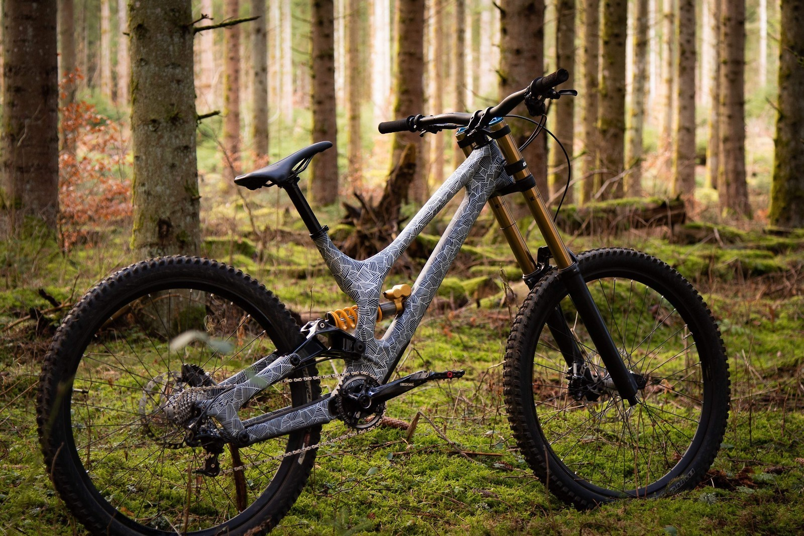 Specialized Demo 8 Carbon - 2019 Vital Bike of the Day Collection - Mountain Biking Pictures - Vital MTB