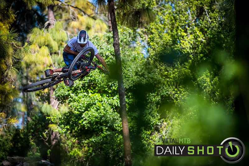Table and Trees - iceman2058 - Mountain Biking Pictures - Vital MTB