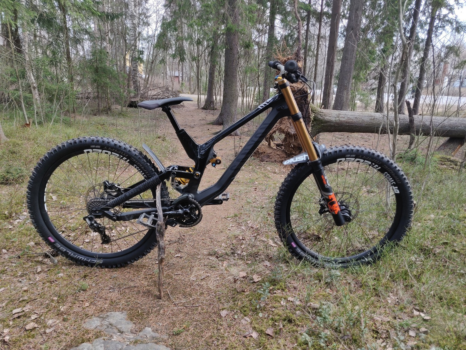 Canyon Sender Ohlins - 2019 Vital Bike of the Day Collection - Mountain Biking Pictures - Vital MTB
