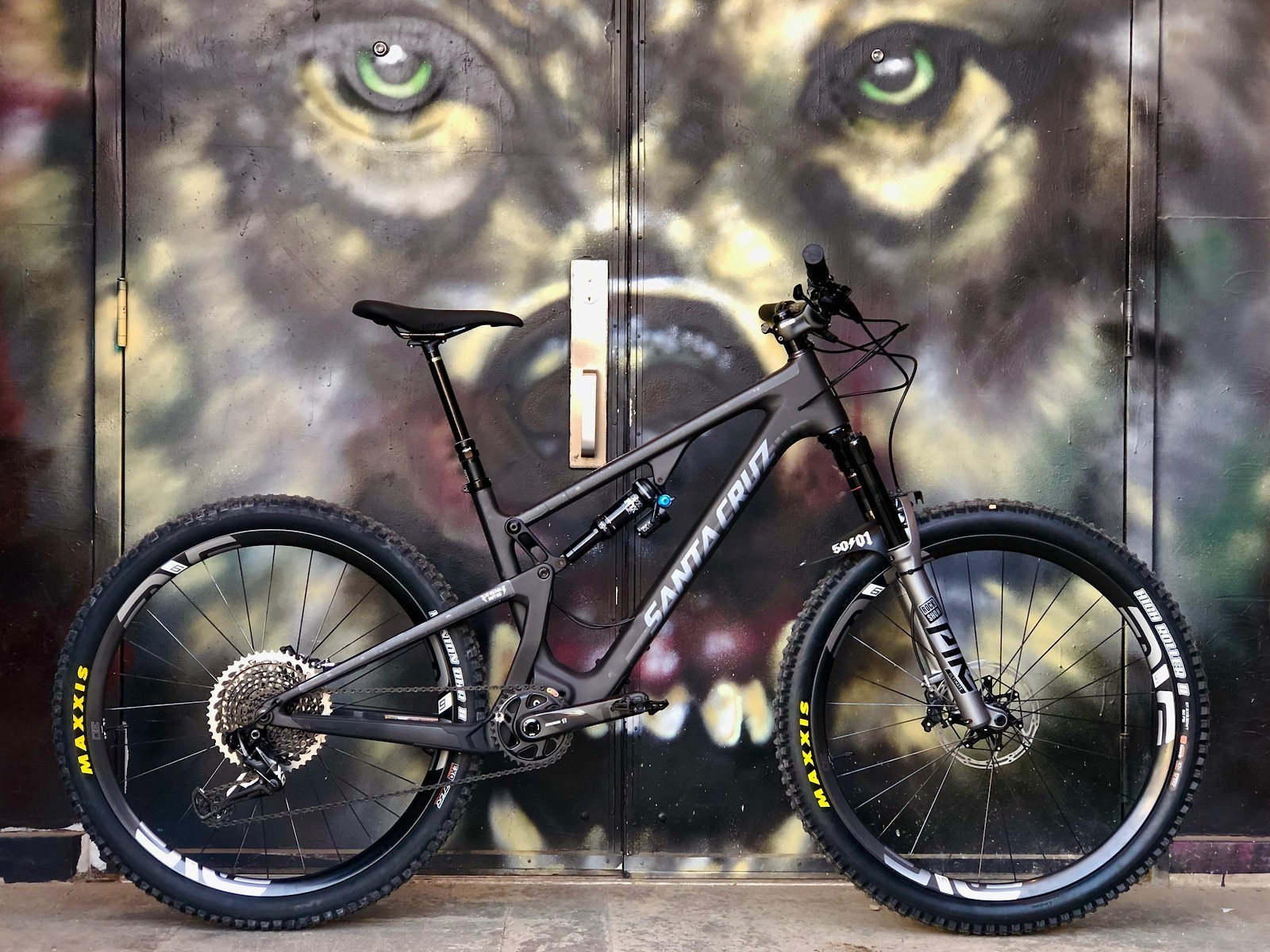 Santa Cruz 5010 - 2019 Vital Bike of the Day Collection - Mountain Biking Pictures - Vital MTB