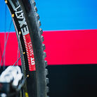 World Championships Winning Bike: Loic Bruni's Specialized Demo 29