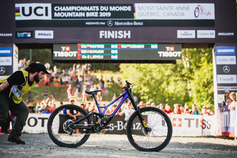 World Championships Winning Bike: Loic Bruni's Specialized Demo 29