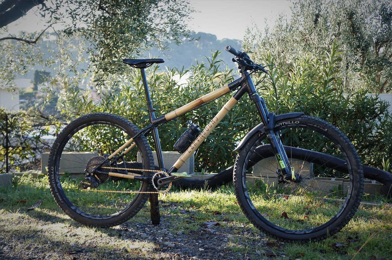 Earthbound Scarab - Vital Bike of the Day December 2020 - Mountain Biking Pictures - Vital MTB