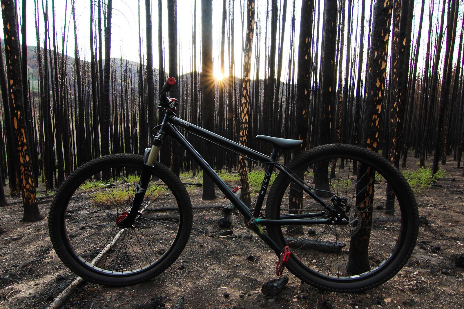 2014 Haro Steel Reserve 1.3 - iceman2058 - Mountain Biking Pictures - Vital MTB