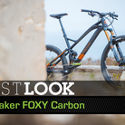 C138_foxy_carbon_spot-a