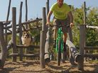 Dog vs. Bike - Who is King of the Playground?