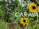 Deity: Caravan with Cody Gessel
