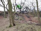 Int' Woods with Matt Stuttard