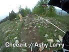 Cheez-it Ashy Larry Helmet Cam Run