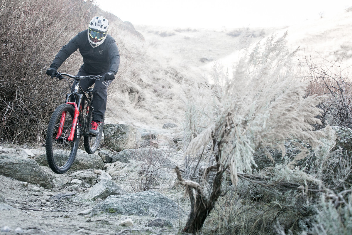 The steel Marin El Roy hardtail had a significant price jump during the midst of our testing period.